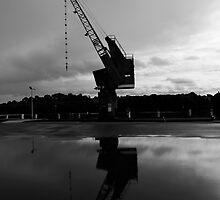 Old Crane With Reflection by Noel Elliot