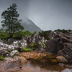 Standing In The Rain by Brian Kerr