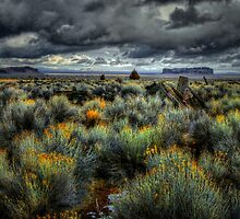 That Old Country Look by Charles & Patricia   Harkins ~ Picture Oregon