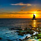 Sun set in full sail... by buddybetsy