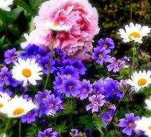 Summer Softness by missmoneypenny