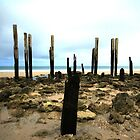 Just the bare bones at Port Willunga Jetty by BBCsImagery