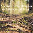 you were given this life because you're strong enough to live it by netza