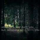 adventure may hurt you but monotony will kill you by netza