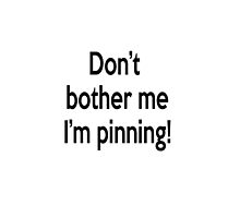 Don't bother me I'm pinning! by netza