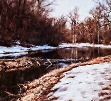 Beaver Pond by Wib Dawson
