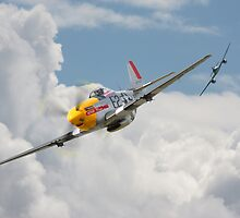 P51 Mustang - Me262 by warbirds