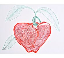 Apple in Ink Photographic Print