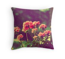Vintage Rainy Morning Throw Pillow