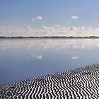 Beauty of the Wadden Sea by Jo Nijenhuis