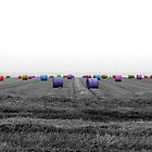 Bales by Anna  West