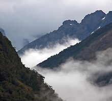 Mountain Top Fog by phil decocco