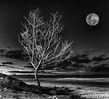 Silvery June Moon by Cheryl Styles