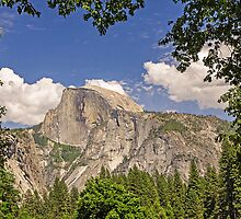 Half Dome, Yosemite Valley - framed by trees by TonyCrehan