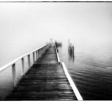 Into the Fog by Robyn Carter