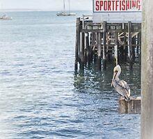 Sportfishing by fairwood63