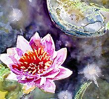 water lily by Rebecca Yoxall