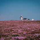 Loop Head Lighthouse by Gary  Collins