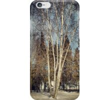 Birch Tree in Winter Original iPhone Case/Skin