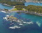 Aerial of Seaplane Jetties, Kodiak, Alaska  by Margaret  Hyde