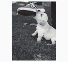 Playful Pup by tornjordans