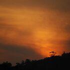 Sunset by Nick Hart