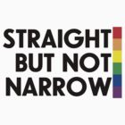 Straight but not narrow (lighter shirts) by northstardesign