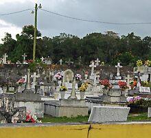 Cemetery in Esperanza Puerto Rico by Ren Provo