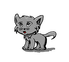 Kitty cat Photographic Print