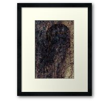 Hairy window 1 Framed Print
