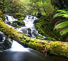 Olivia Creek Cascades pt 3 by bluetaipan