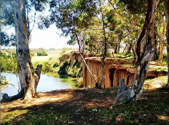 At the bend of the River - Werribee Vic.  by EdsMum