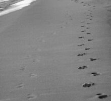 With Me Every Step of the Way by Carrie Bonham