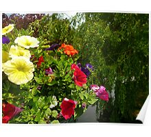 Hanging basket over the water . Poster