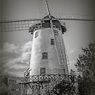 The Windmill, Launceston, Tasmania, Australia #2 by Elaine Teague