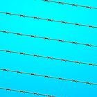 Barbed wire on blue sky background 02 by CamposDO