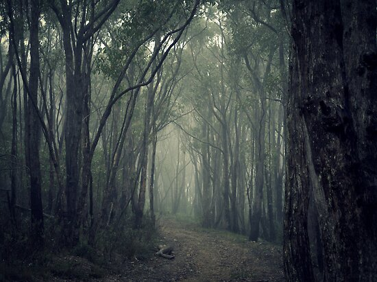 A Road Less Travelled by Ben Loveday