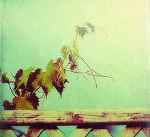 gypsy by Kelly Letky