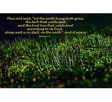 Genesis 1:11 (day 10) Photographic Print