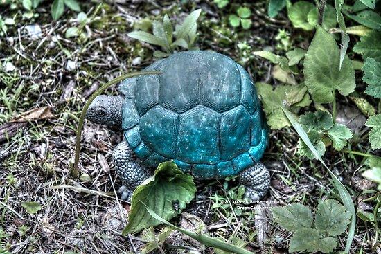 Turtle by DreamCatcher/ Kyrah Barbette L Hale