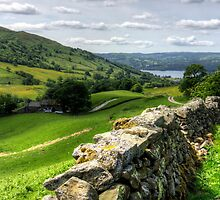 Windermere from The Struggle by Tom Gomez