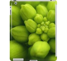 Wildflowers 2 - Hoary Alyssum Buds iPad Case/Skin