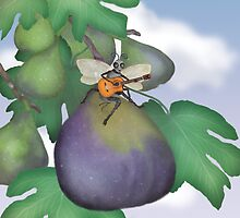The Fig Wasp Ramble  by Kim  Harris