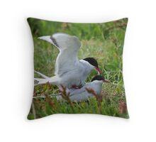 Arctic Terns Being Amorous  Throw Pillow