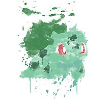 Graffiti Bulbasaur Photographic Print