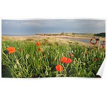 Alnmouth, Northumberland Poster