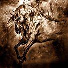 Pony Express by Herbert Renard