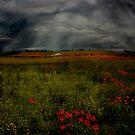 Lenham Cross by Dave Godden
