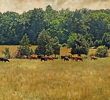 Pastoral by MotherNature2