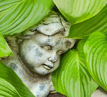 Tatiana Asleep in the Hostas by Marilyn Cornwell